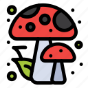 autumn, forest, mushrooms icon