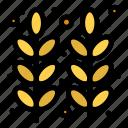 autumn, food, grain, thanksgiving, wheat