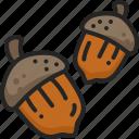 acorn, food, oak, chestnut, autumn, nut icon