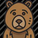 zoo, bear, wildlife, animal, wild, mammal, teddy