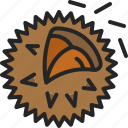 food, asia, thorn, chestnut, eat, nut icon