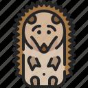 porcupine, pet, animal, hedgehog, zoo, nature, mammal icon