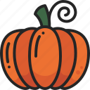 healthy, food, vegetable, autumn, pumpkin, harvest icon