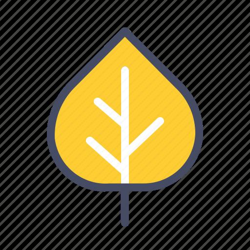 Aspen, autumn, fall, green, leaf, nature, season icon - Download on Iconfinder