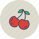 autumn, berries, berry, cherries, cherry, fruit, season