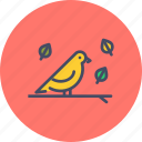 autumn, bird, cute, fall, season, spring icon