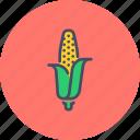 maize, food, sweet, corn, american, grain, staple