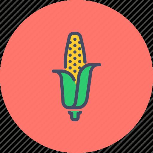 american, corn, food, grain, maize, staple, sweet icon