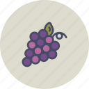 berry, food, fruit, grapes, healthy, vine, wine