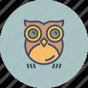 bird, halloween, horror, night, nocturnal, omen, owl