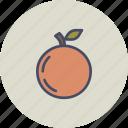 autumn, food, fruit, healthy, orange, peach, spring