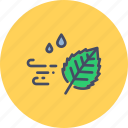 autumn, fall, leaf, season, weather, wind, windy icon