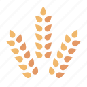 agriculture, crop, food, gluten, grain, harvest, wheat icon