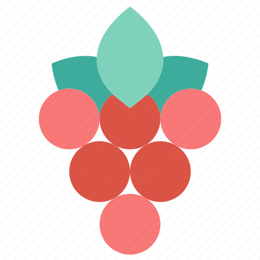 autumn, berry, fruit, grape, leaf, nature icon