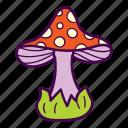 amanita, fungus, mushroom, poison, venom icon