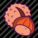 chestnut, nut, spike, thorn icon