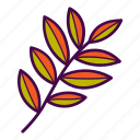autumn, branch, fall, leaves, palm, tree icon