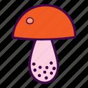 fungus, mushroom icon