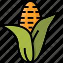 autumn, corn, food, grain, maize, plant, staple icon