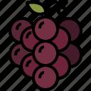 autumn, berry, food, fruit, grapes, healthy, vine icon