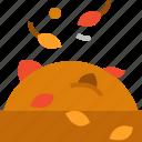 autumn, fall, leafs icon