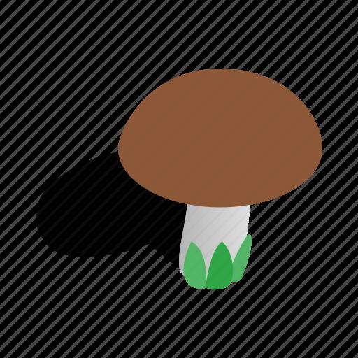 food, graphic, healthy, isometric, mushroom, nature, vegetable icon