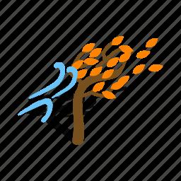 autumn, fall, isometric, nature, season, tree, wind icon