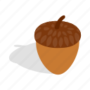 acorn, isometric, nature, nut, oak, plant, seed