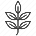 ash, autumn, leaf, nature, tree icon
