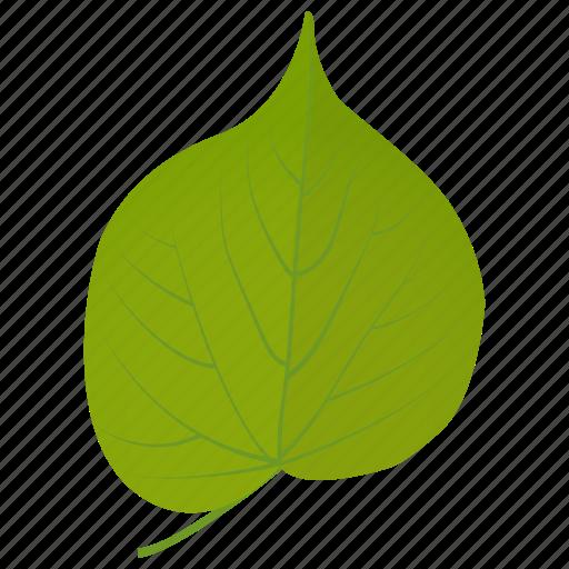 foliage, green leaf, leaf, linden leaf, tilia leaf icon