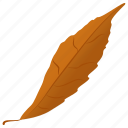 autumn leaf, fall leaf, foliage, generic leaf, leaf icon