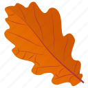autumn leaf, foliage, leaf, leaf in fall, oak leaf icon