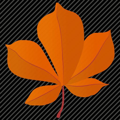 autumn leaf, foliage, hickory leaf, horse chestnut, leaf, leaf in fall icon
