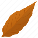 autumn leaf, foliage, leaf, leaf in fall, magnolia leaf icon