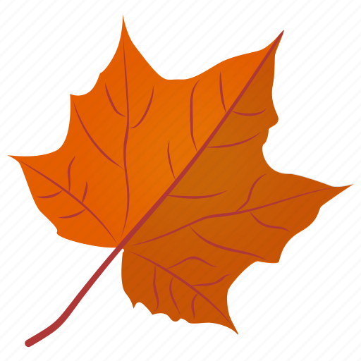 Image result for fall leaf icon png