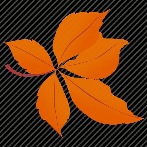autumn leaves, chestnut leaves, foliage, leaf in fall, leafy twig icon