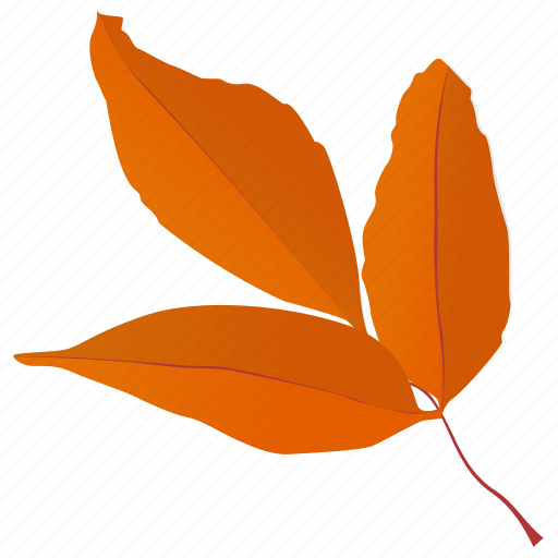 autumn leaves, foliage, generic leaves, leaf in fall, leafy twig icon