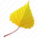 autumn leaf, foliage, leaf, leaf in fall, poplar leaf icon