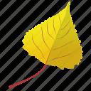autumn leaf, foliage, leaf, leaf in fall, poplar leaf icon