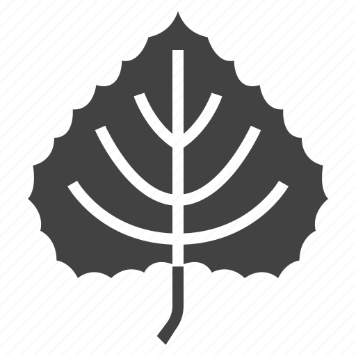 autumn, leaf, linden, nature, tree icon