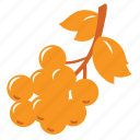 autumn, farm, food, fruit, healthy, nature, tree icon