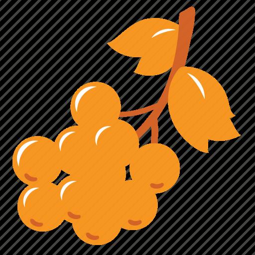 autumn, farm, food, fruit, healthy, nature, tree icon