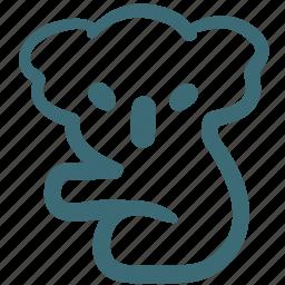 animal, bear, cola, doodle, koala bear icon