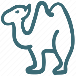 animal, camel, doodle icon