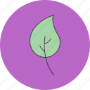 leaf, leave, natural, nature icon