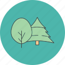 natural, nature, plant, tree icon