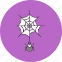 danger, spider, web icon
