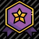 badge, competition, insignia, reward, award