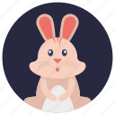 cartoon rabbit, soft toy, toy, toy bunny, toy rabbit icon