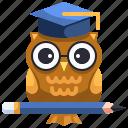 intelligent, knowledge, mentality, owl, wisdom